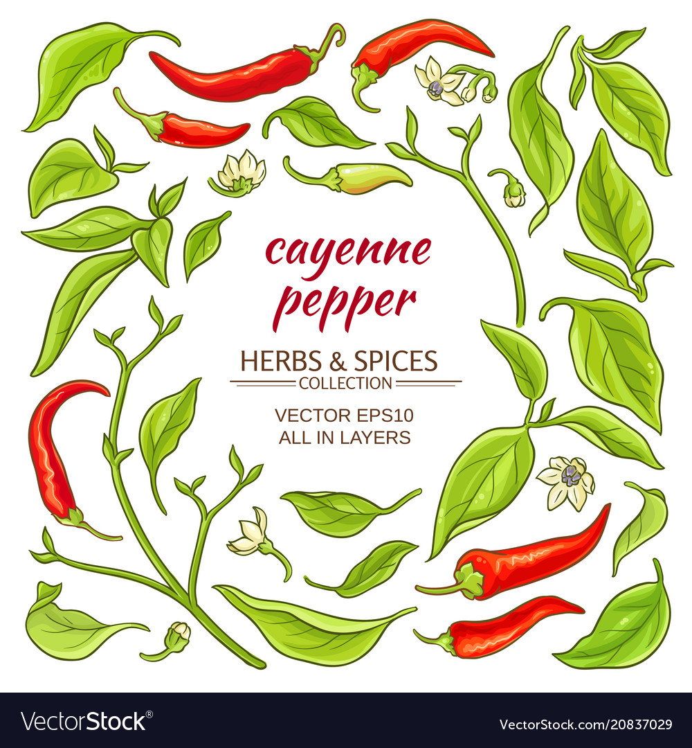 Cayenne pepper elements set