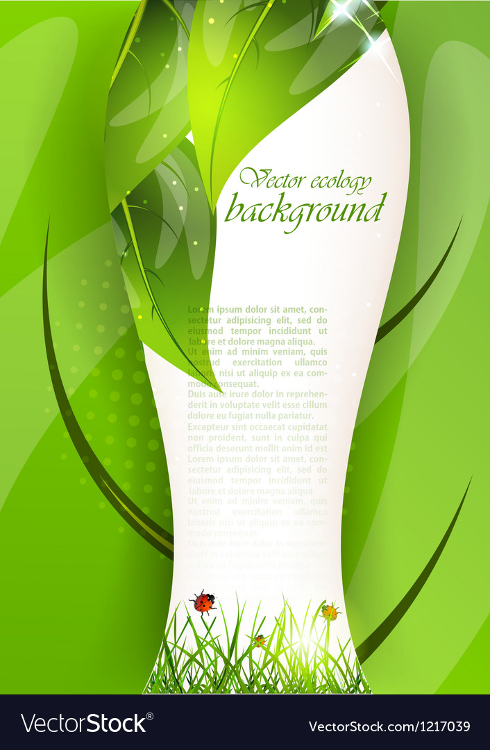 Background with leaves and grass vector image