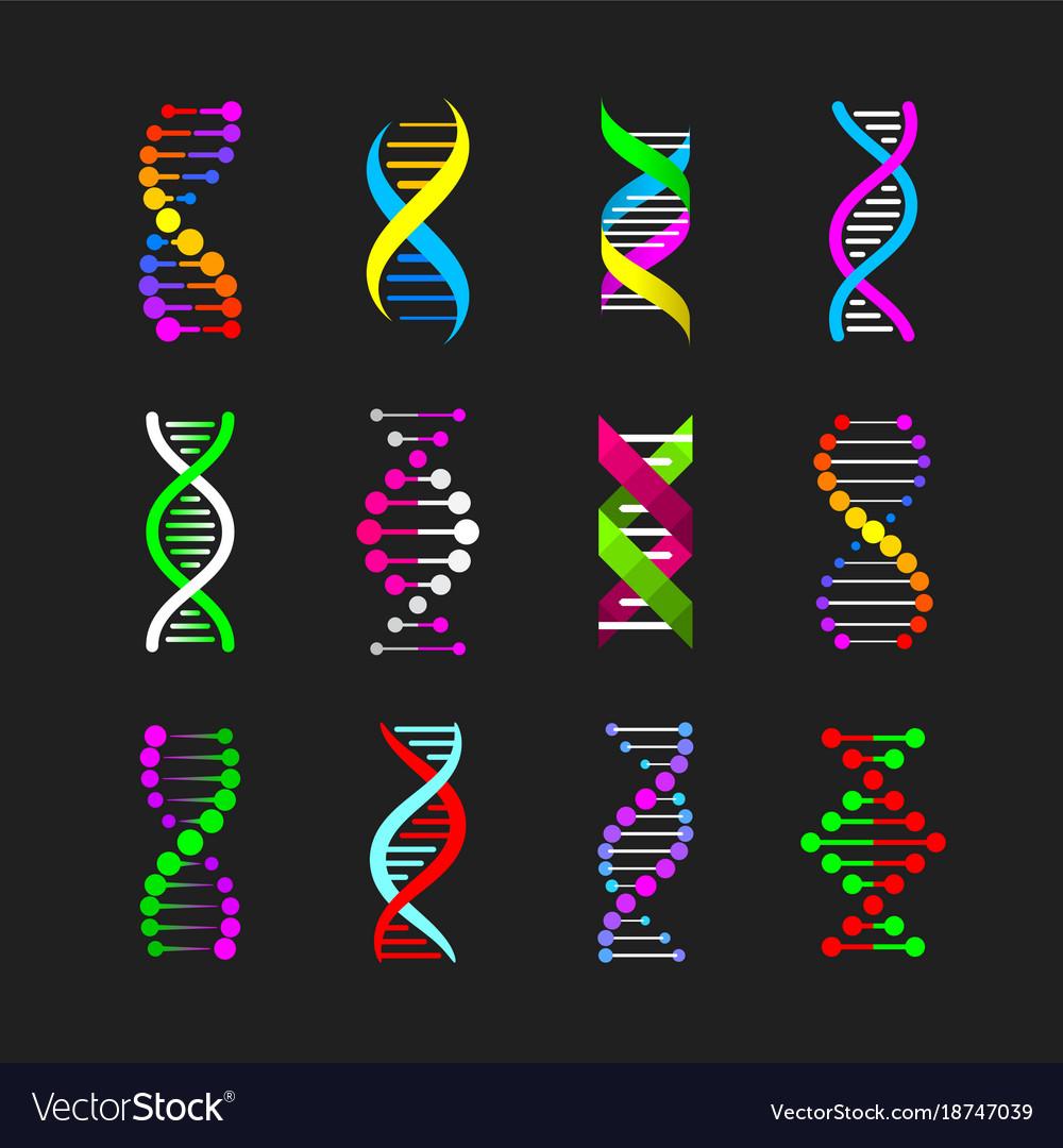 https://www.medsci.ox.ac.uk/files/folding-genome/ALL_RoyalSocietyActivityPackandBrochure_final.pdf | 1080x1000