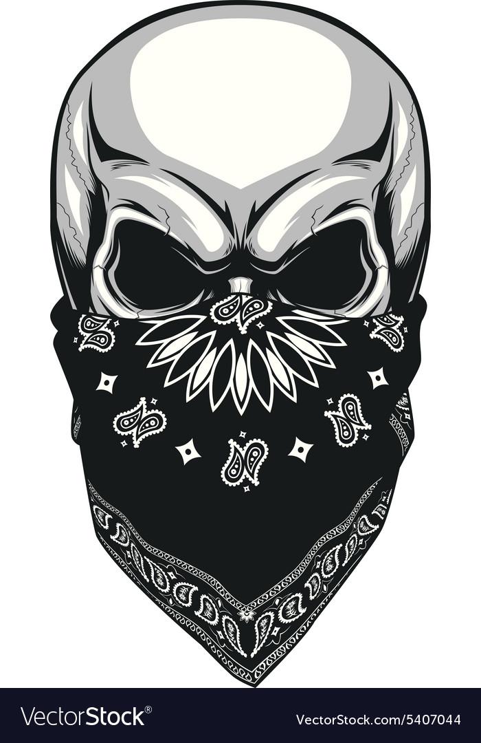 skull bandana royalty free vector image vectorstock rh vectorstock com bandana vector free download banana victoria sponge