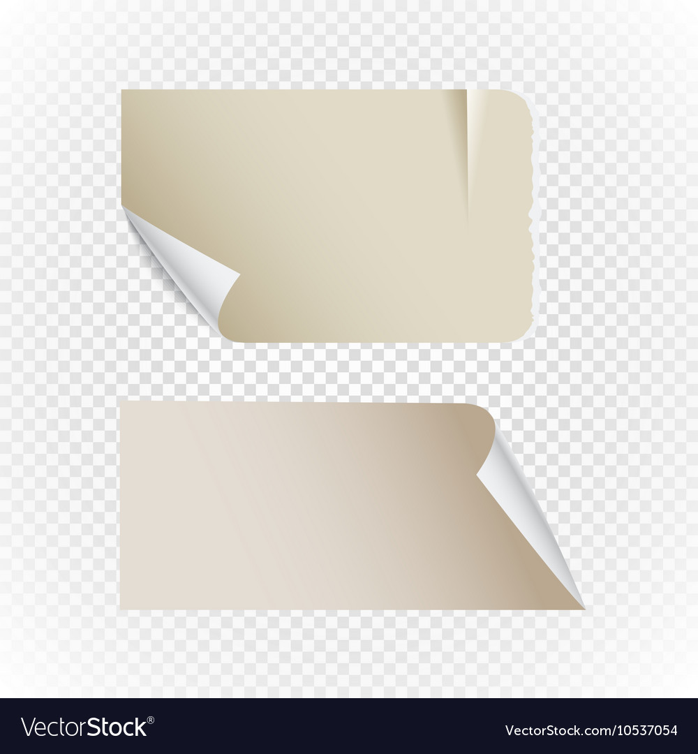 Collectionn of vintage paper isolated on vector image