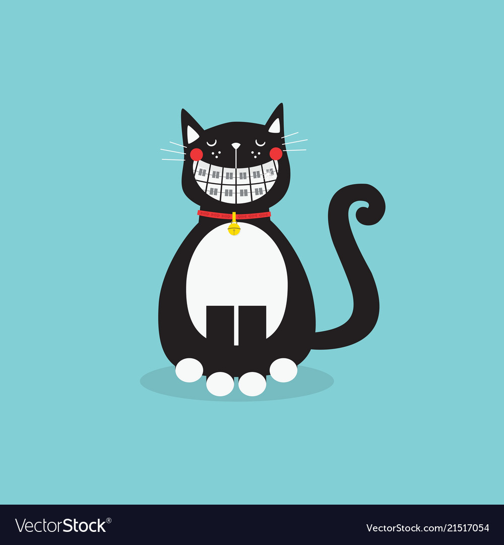 Cute laughing sitting black cat with funny