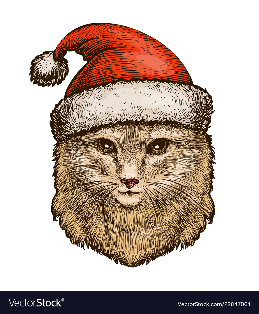 Cat kitty in a christmas hat sketch vintage