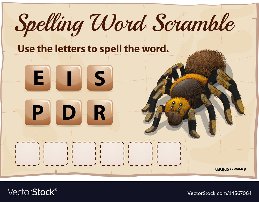 Spelling word scrable game with word spider
