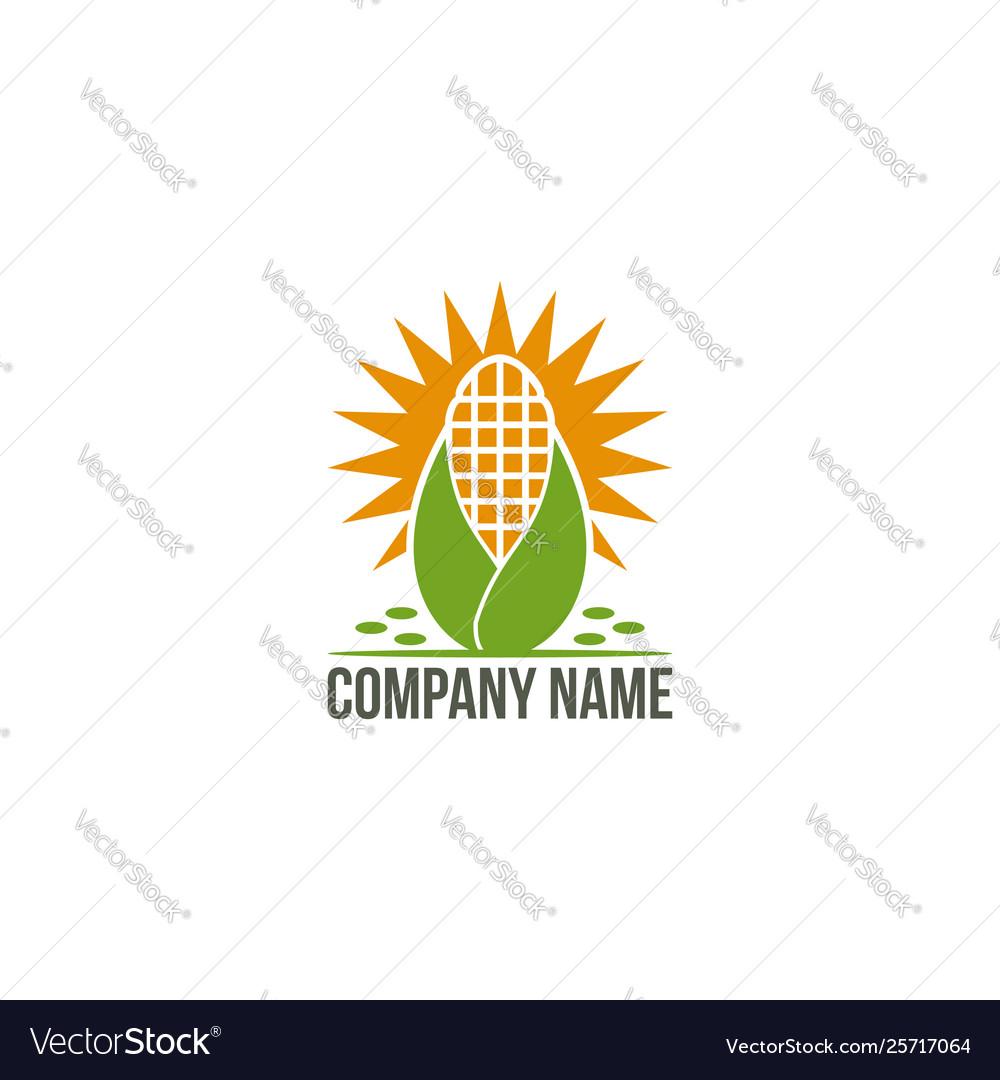 Sun corn logo