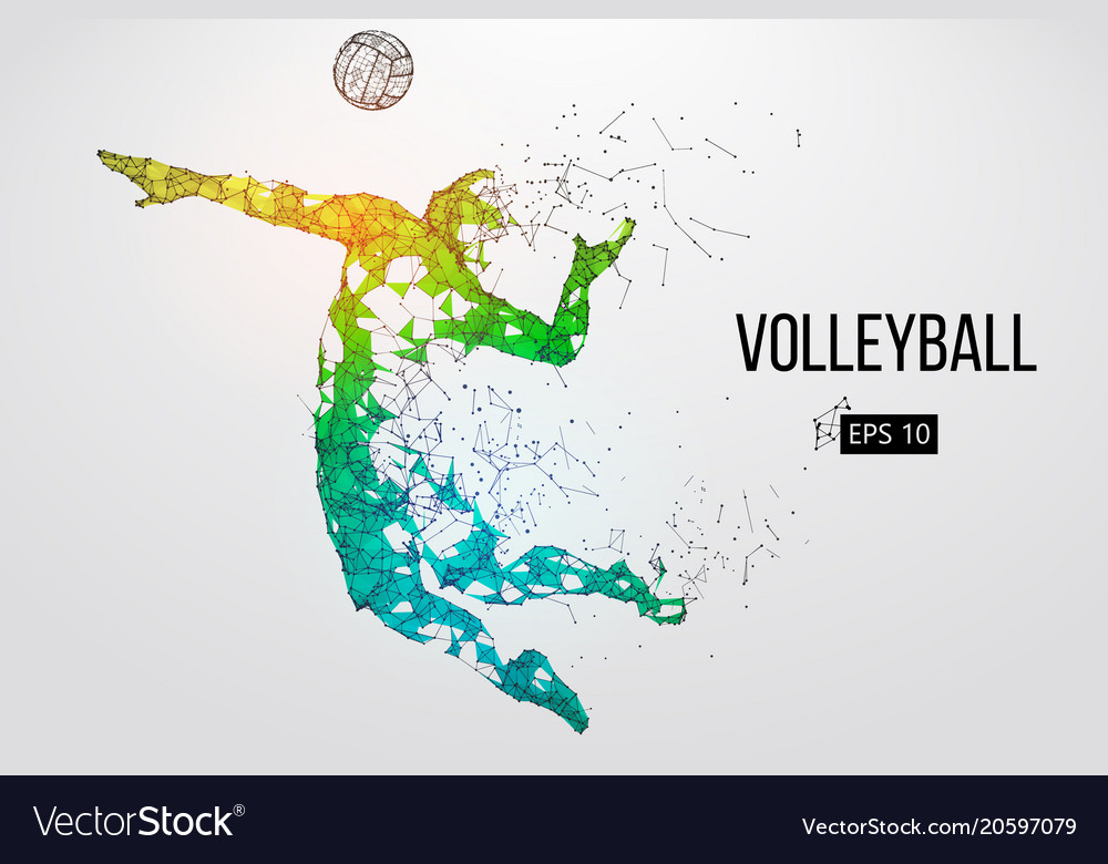 Silhouette volleyball player