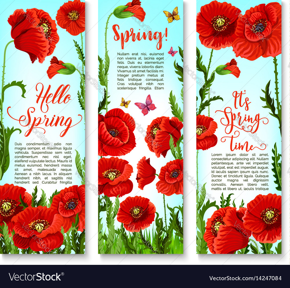 Banners of spring poppy flowers and quotes vector image mightylinksfo
