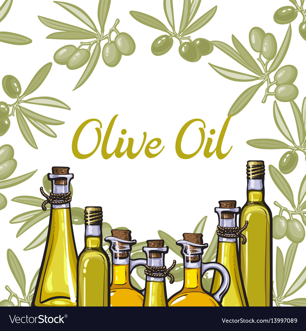 Banner label with olive branches oil bottles