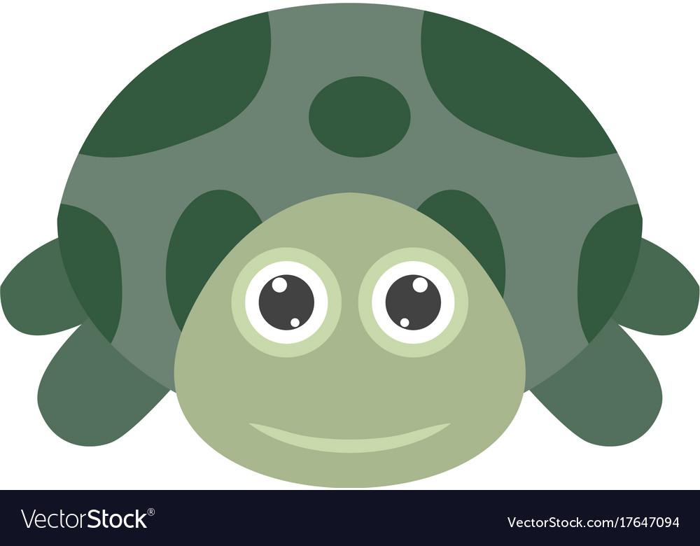 Turtle Face Royalty Free Vector Image Vectorstock