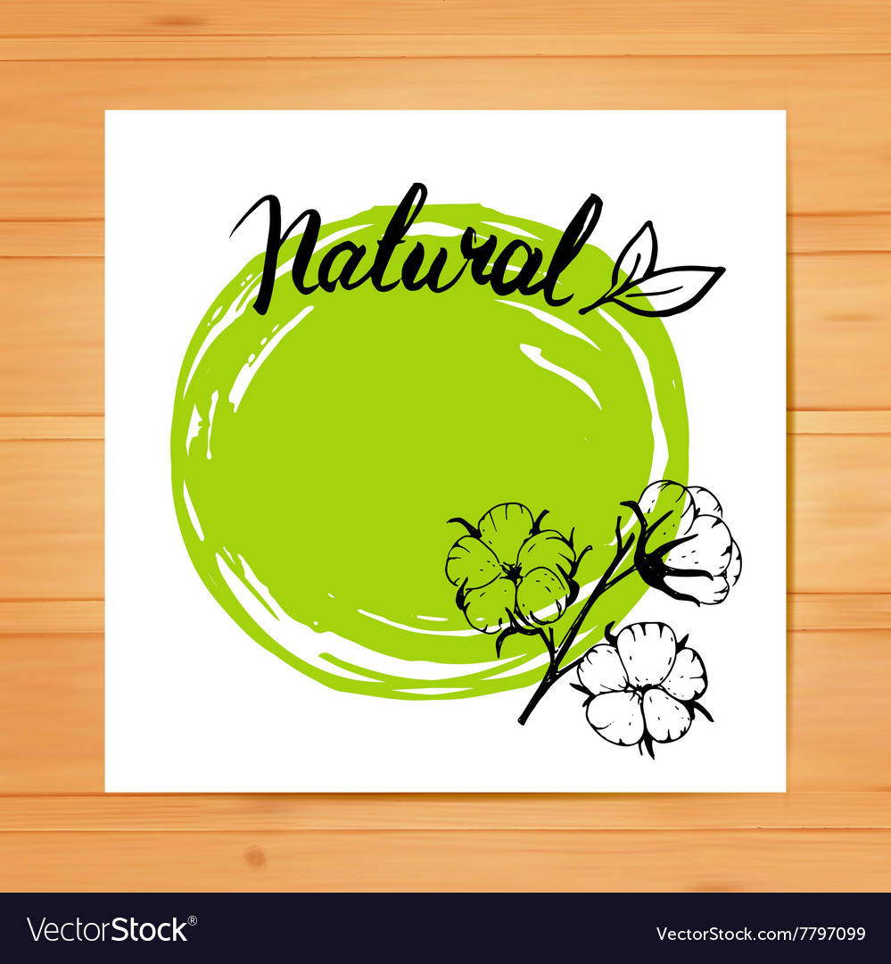 Template design cards with cotton vector image