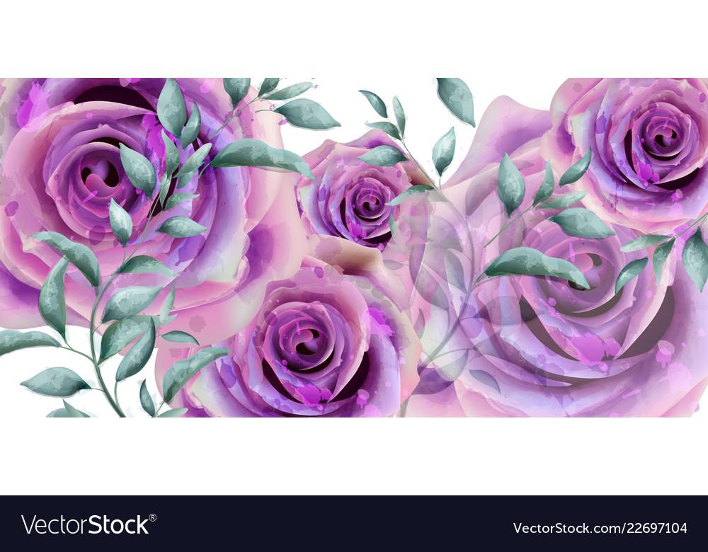 Purple roses watercolor banner beautiful