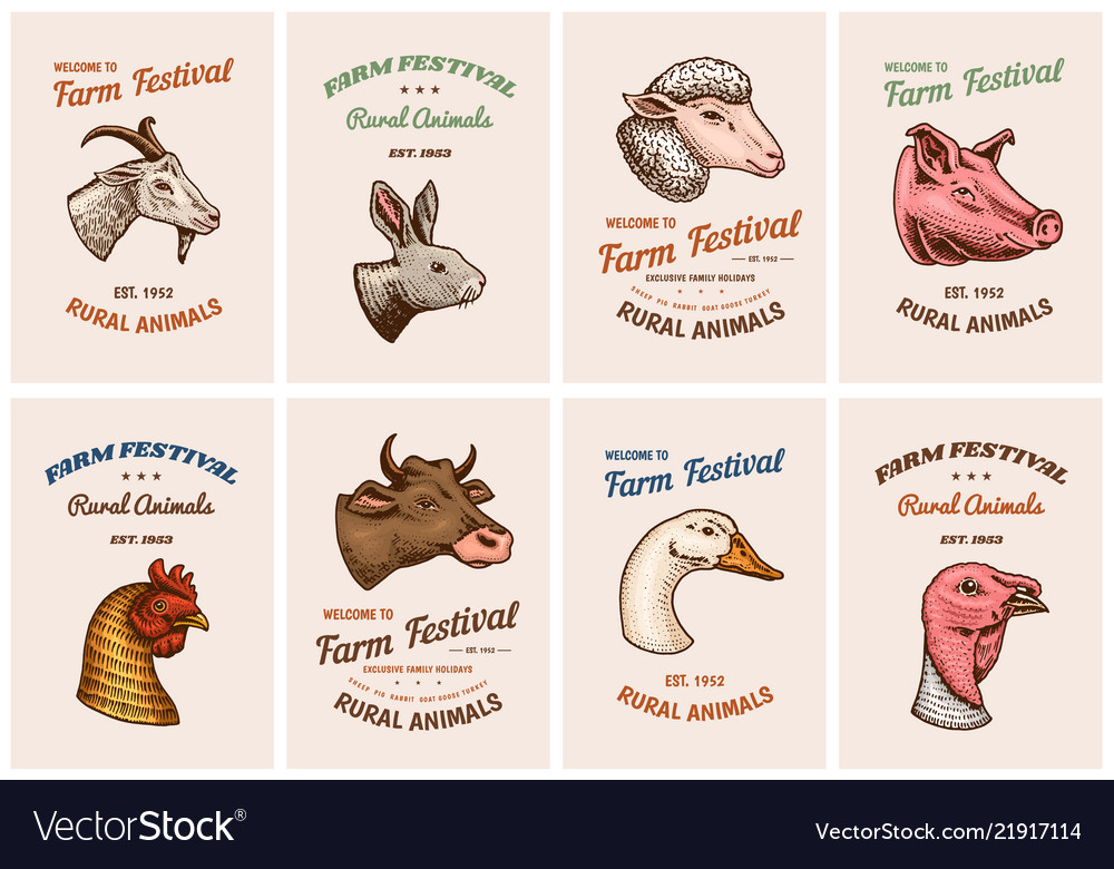 Farm animals cards head of a domestic pig goat
