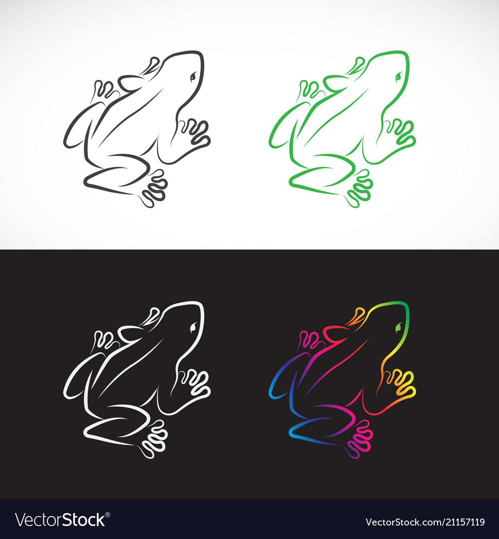 Frogs design on white background and black