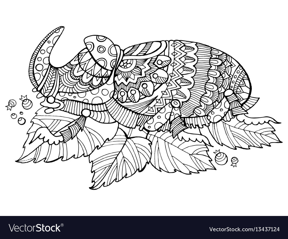 Rhinoceros beetle insect coloring book