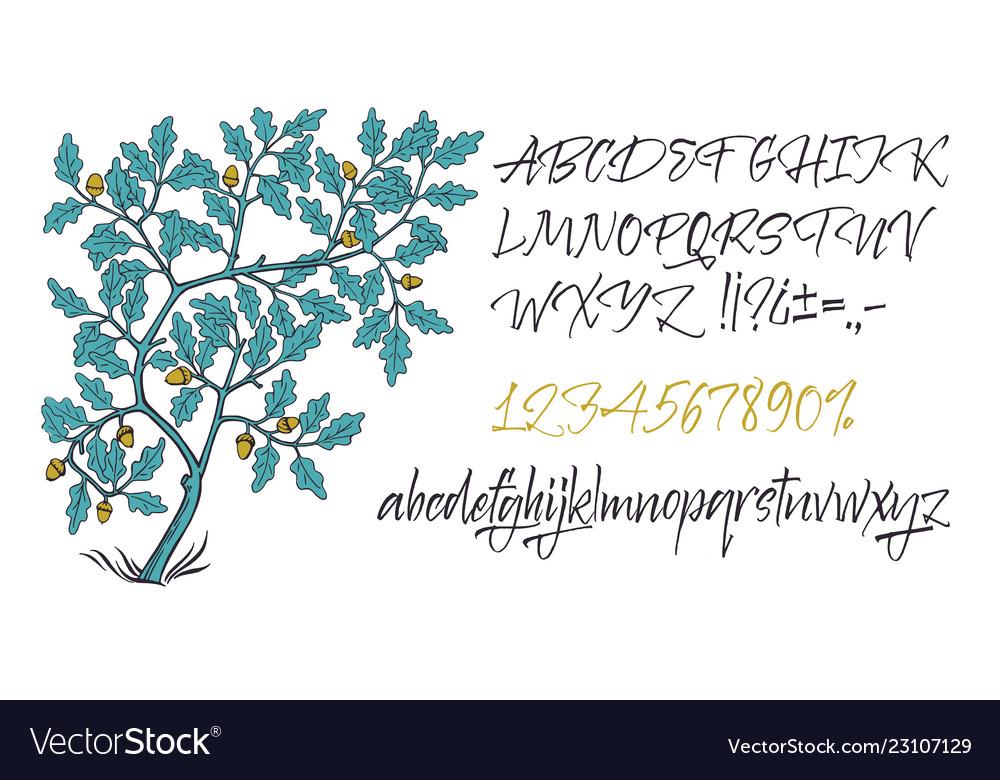 Alphabet hand drawn letters