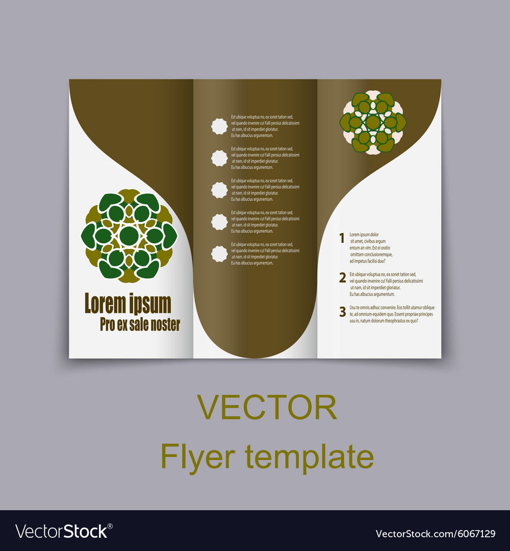brochure layout design template royalty free vector image