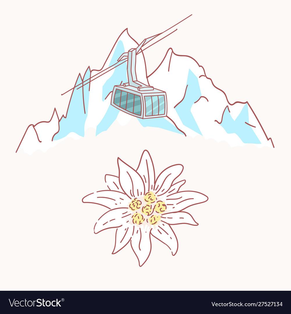 Edelweiss mountains gondola flower symbol alpinism