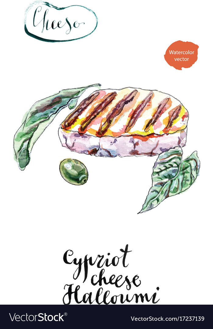 Watercolor grilled of cypriot halloumi cheese