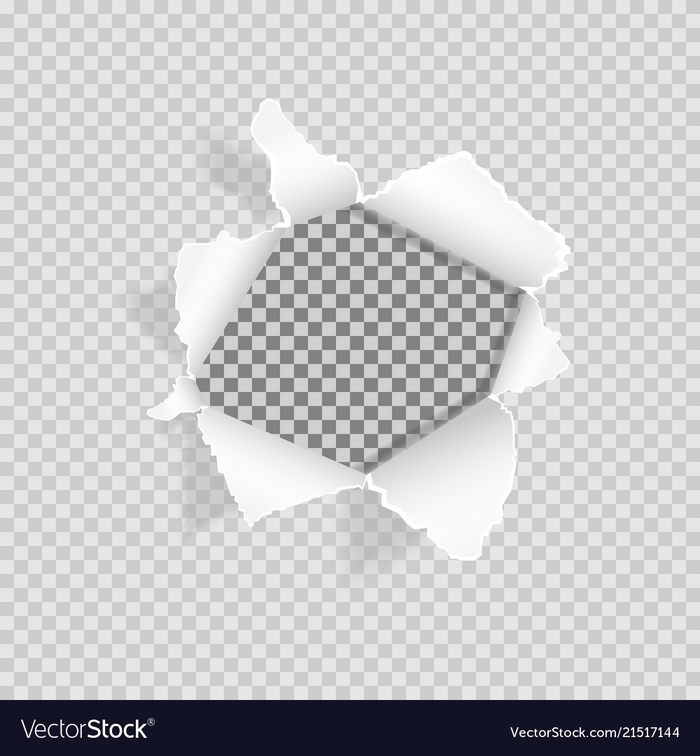 torn paper on transparent background realistic vector image