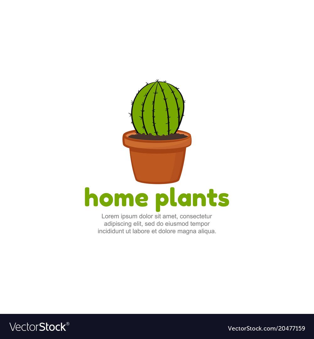 Template logo for home plants cartoon cactus icon