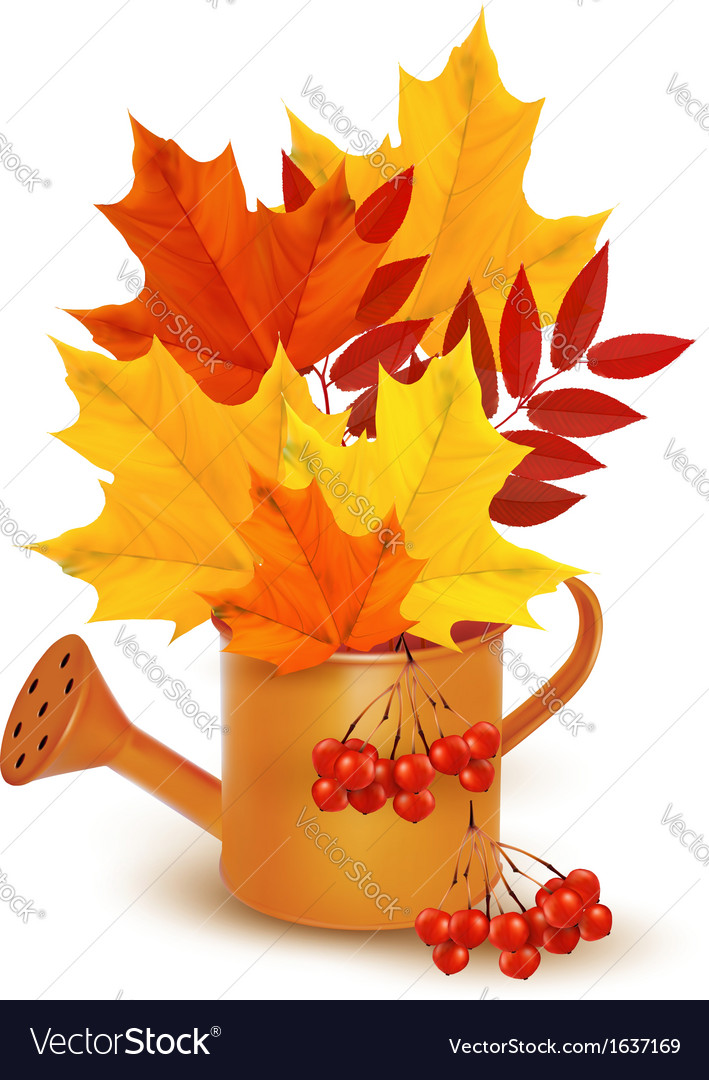 Autumn background with colorful leaves growing in