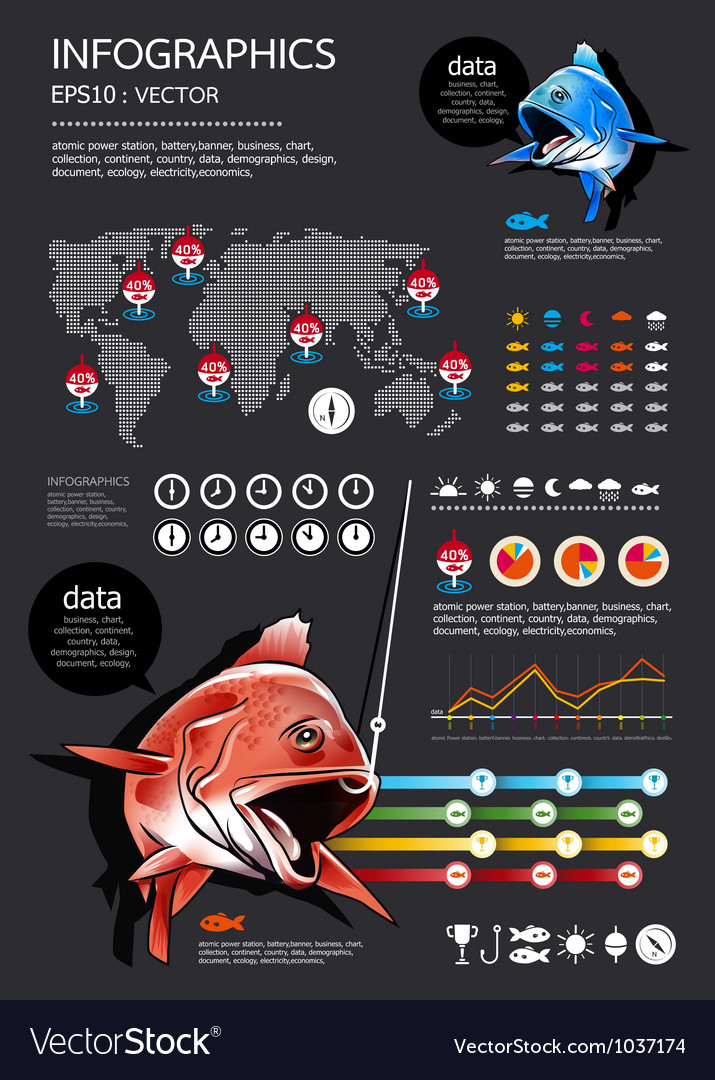 Fishing Infographics vector image