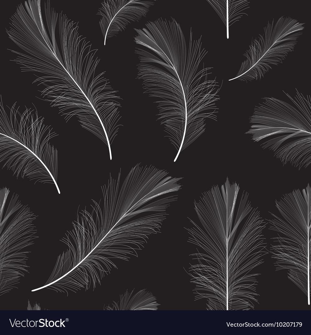 Bird Feather Hand Drawn Seamless Pattern