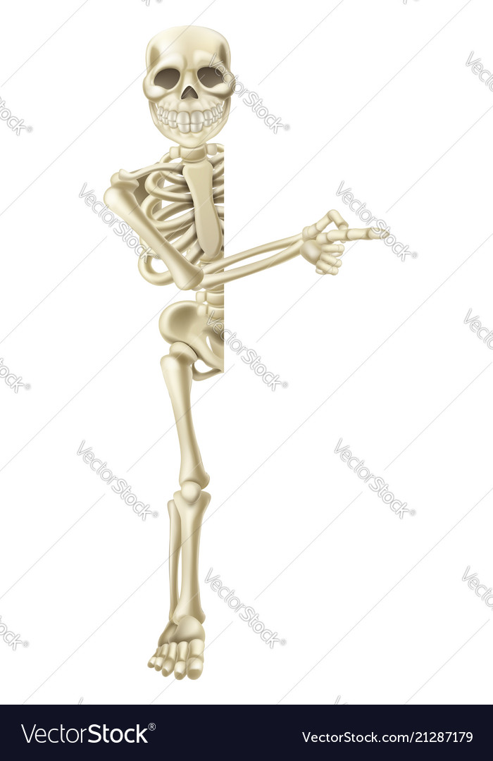 Cartoon halloween skeleton pointing