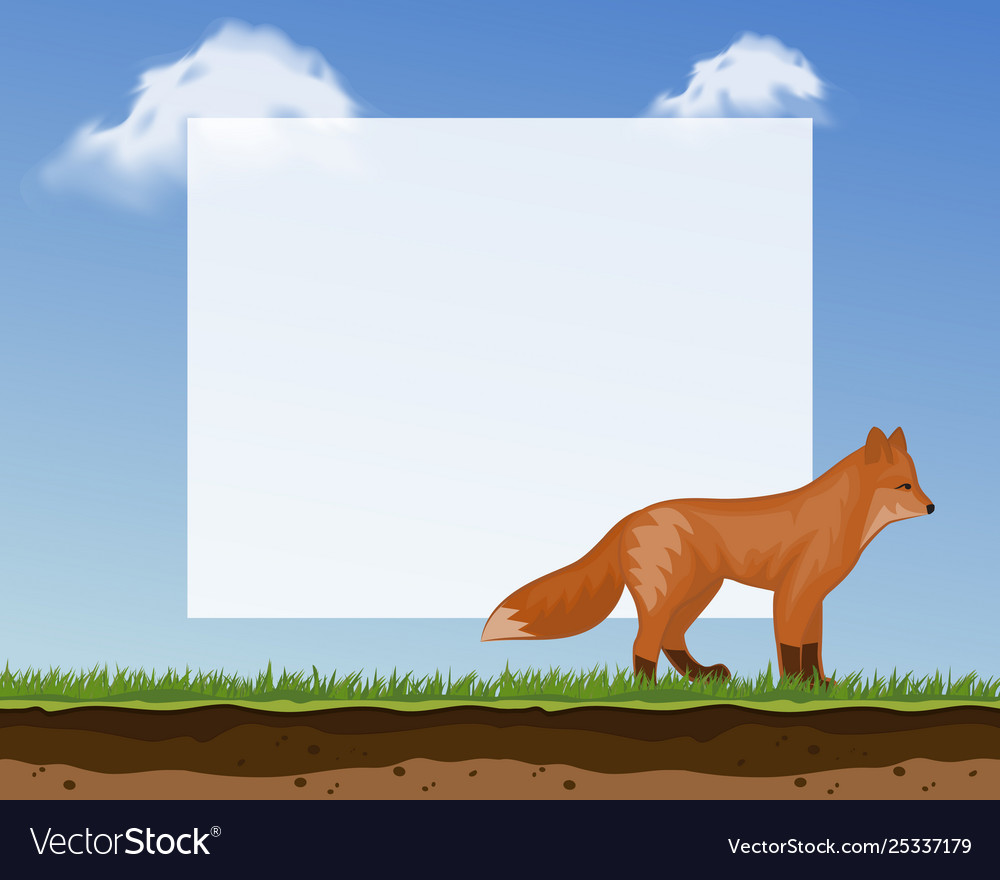 Cute fox frame for photos and pictures banner