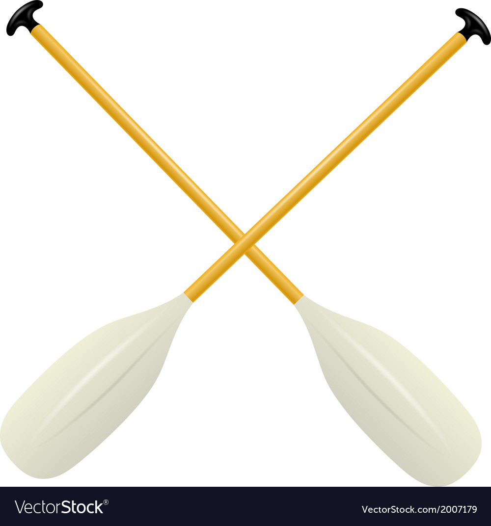 Two oars for canoe vector image