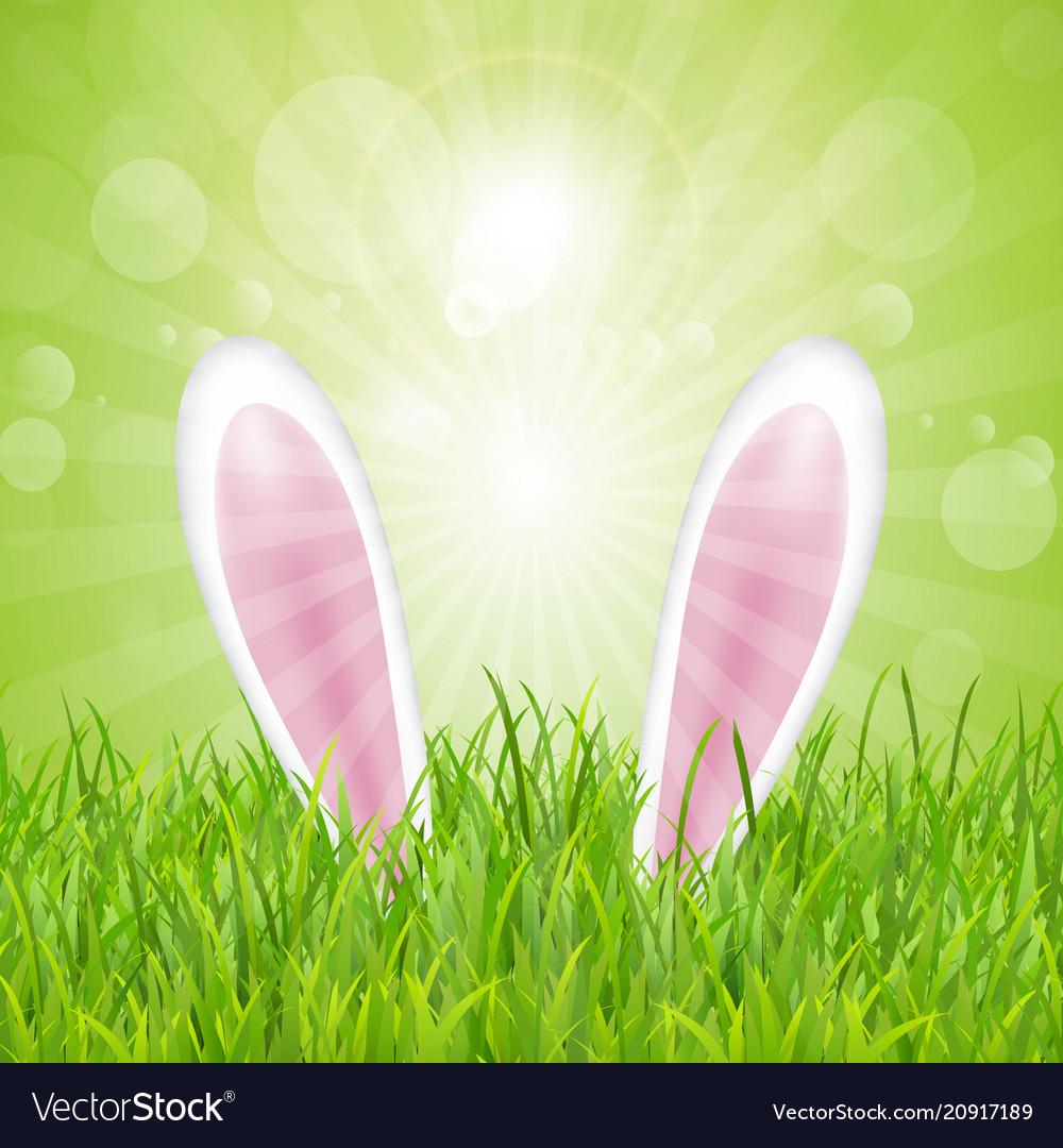 Easter bunny ears nestled in grass