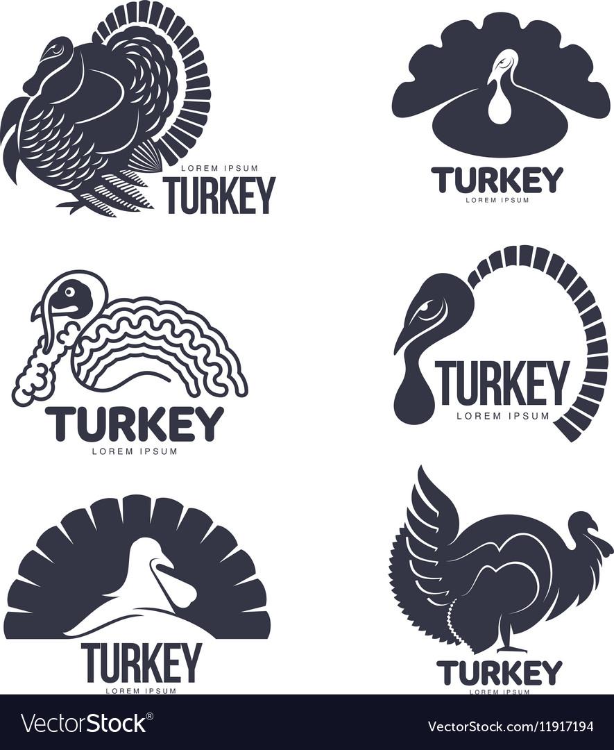 Set of turkey stylized graphic logo templates