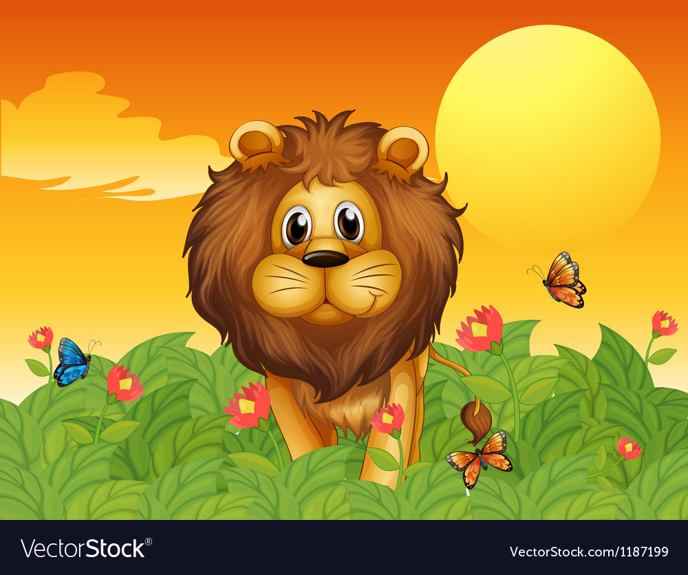 A lion and the butterflies