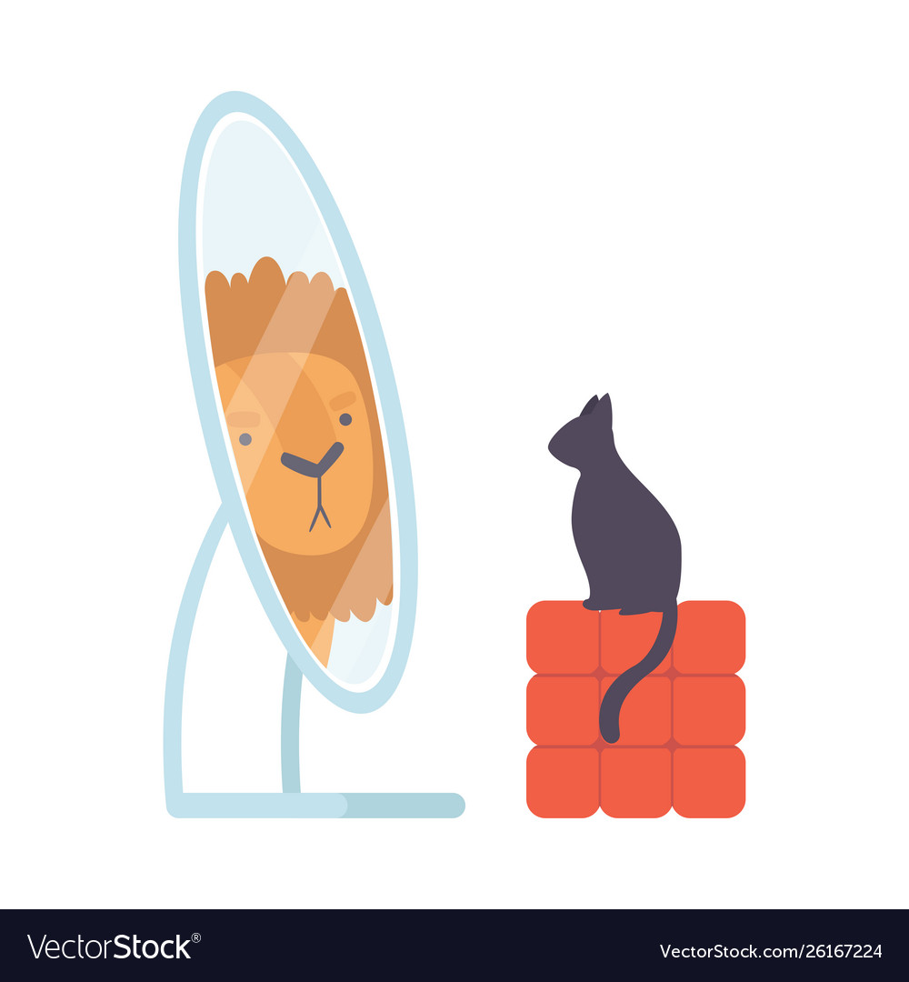 Black cat looking at mirror pretend to be lion