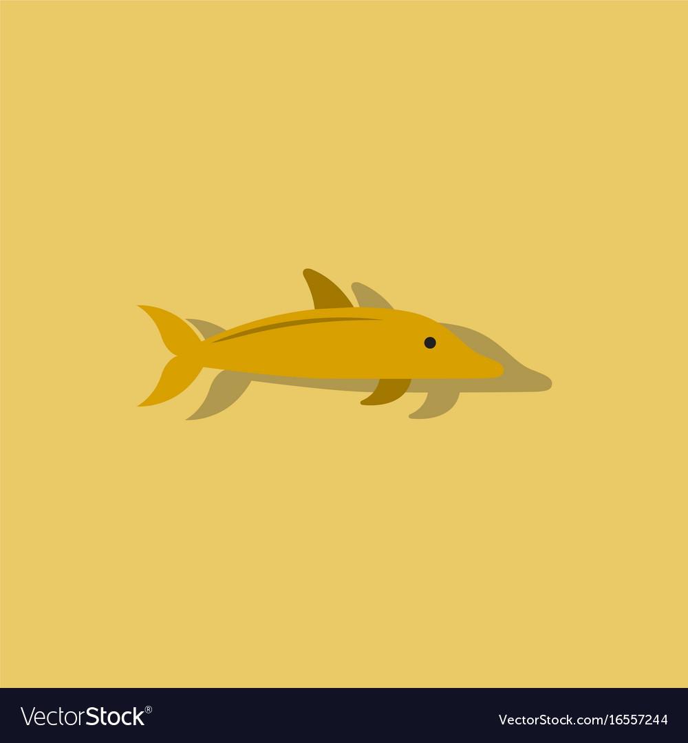 Dolphin delphinus delphis in sticker style