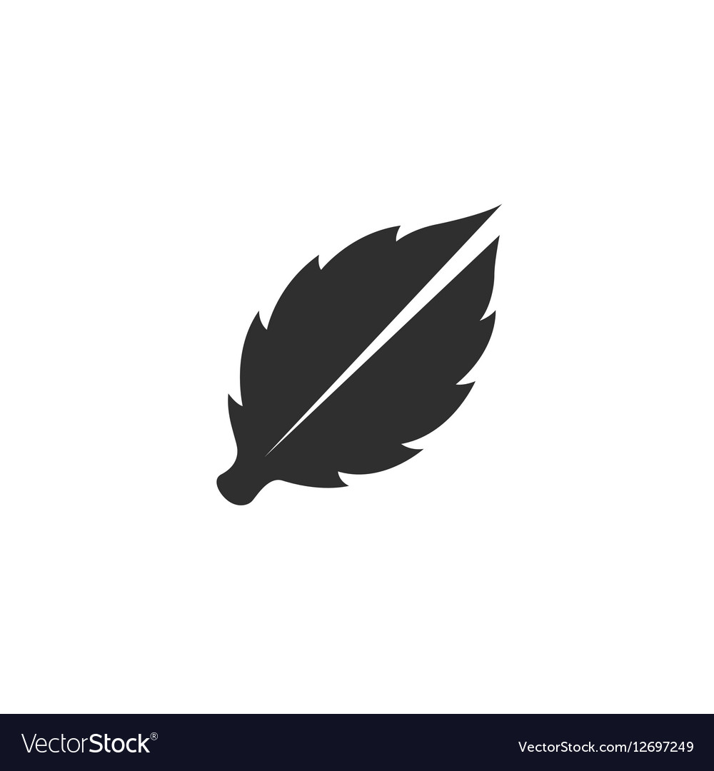 Leaves icon isolated on a white background vector image