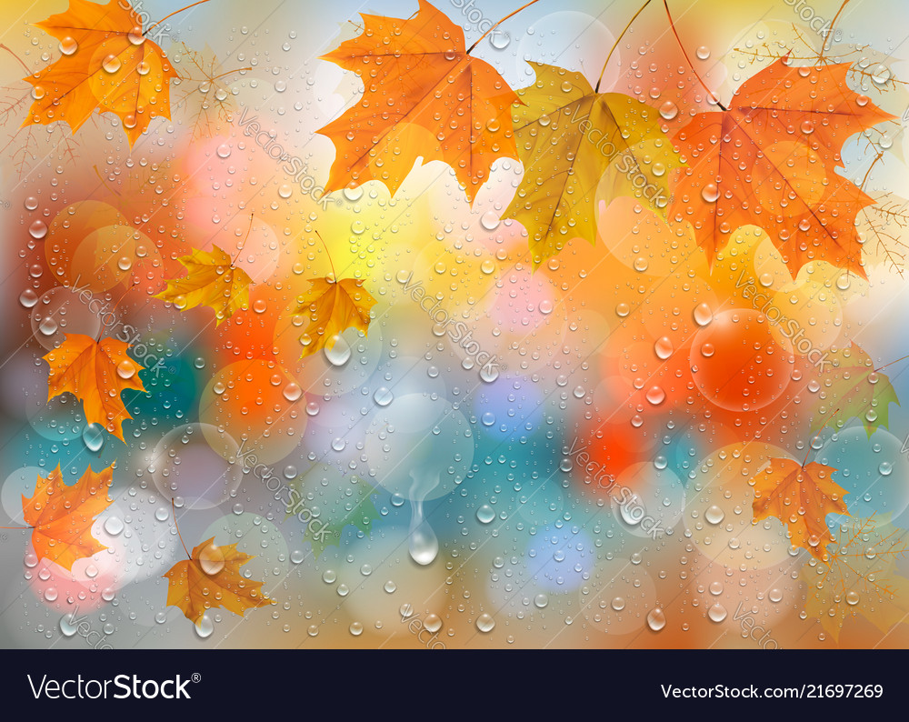 Autumn colorful background with leaves and