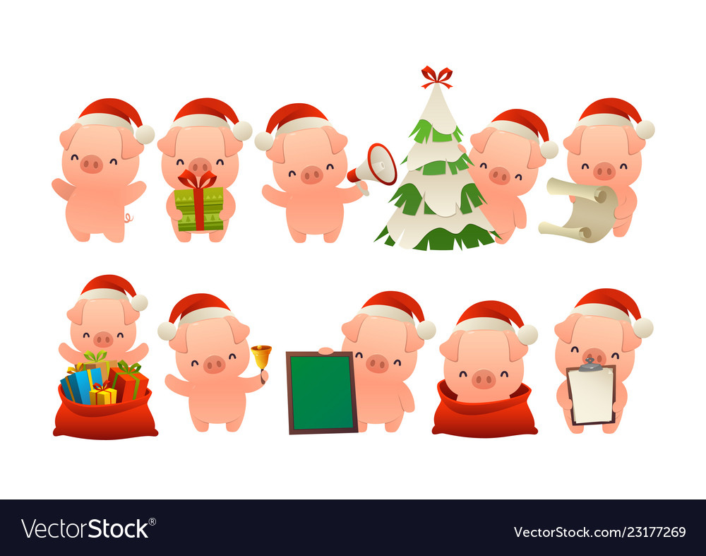 Collection of happy cute christmas pig isolated