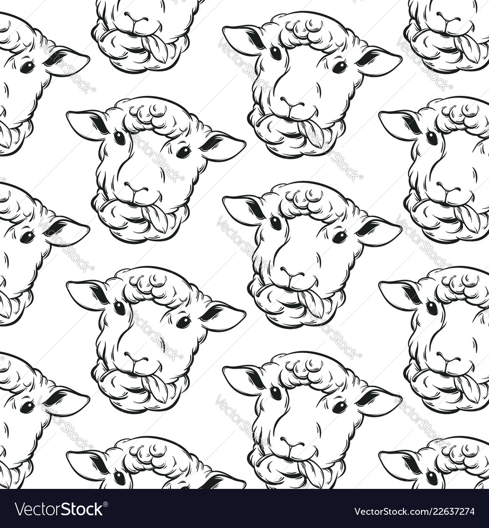 Pattern with hand drawn sheeps template for card