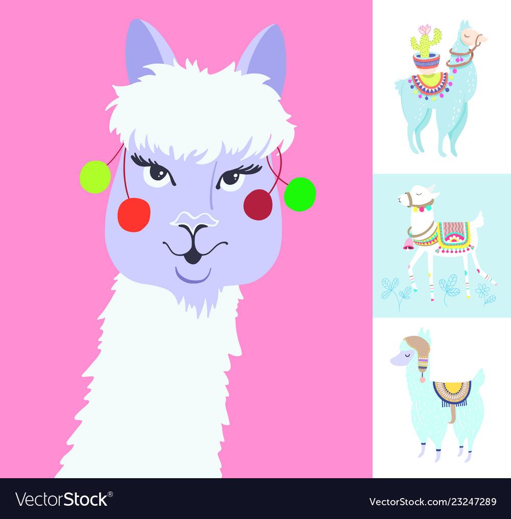 Alpaca portrait for avatar funny llama with