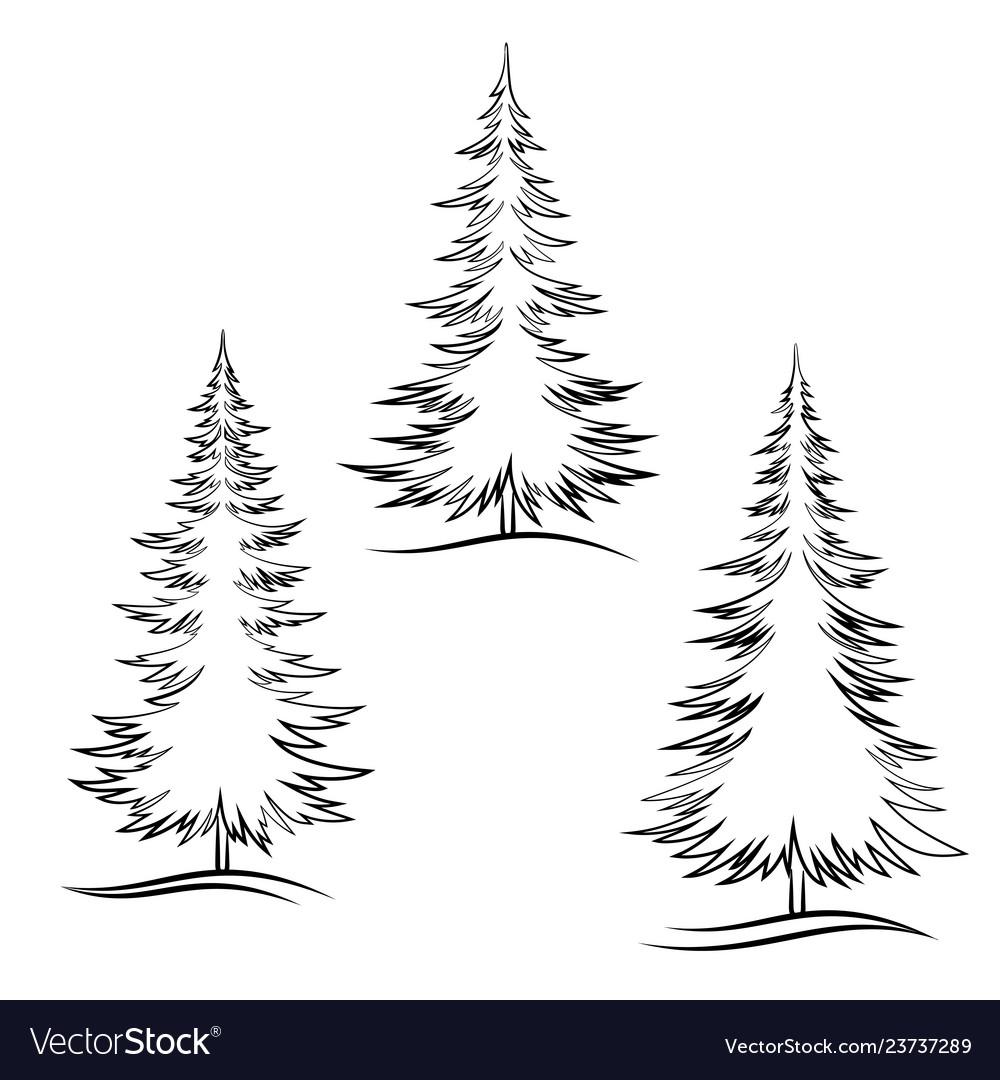 Contour Christmas Trees
