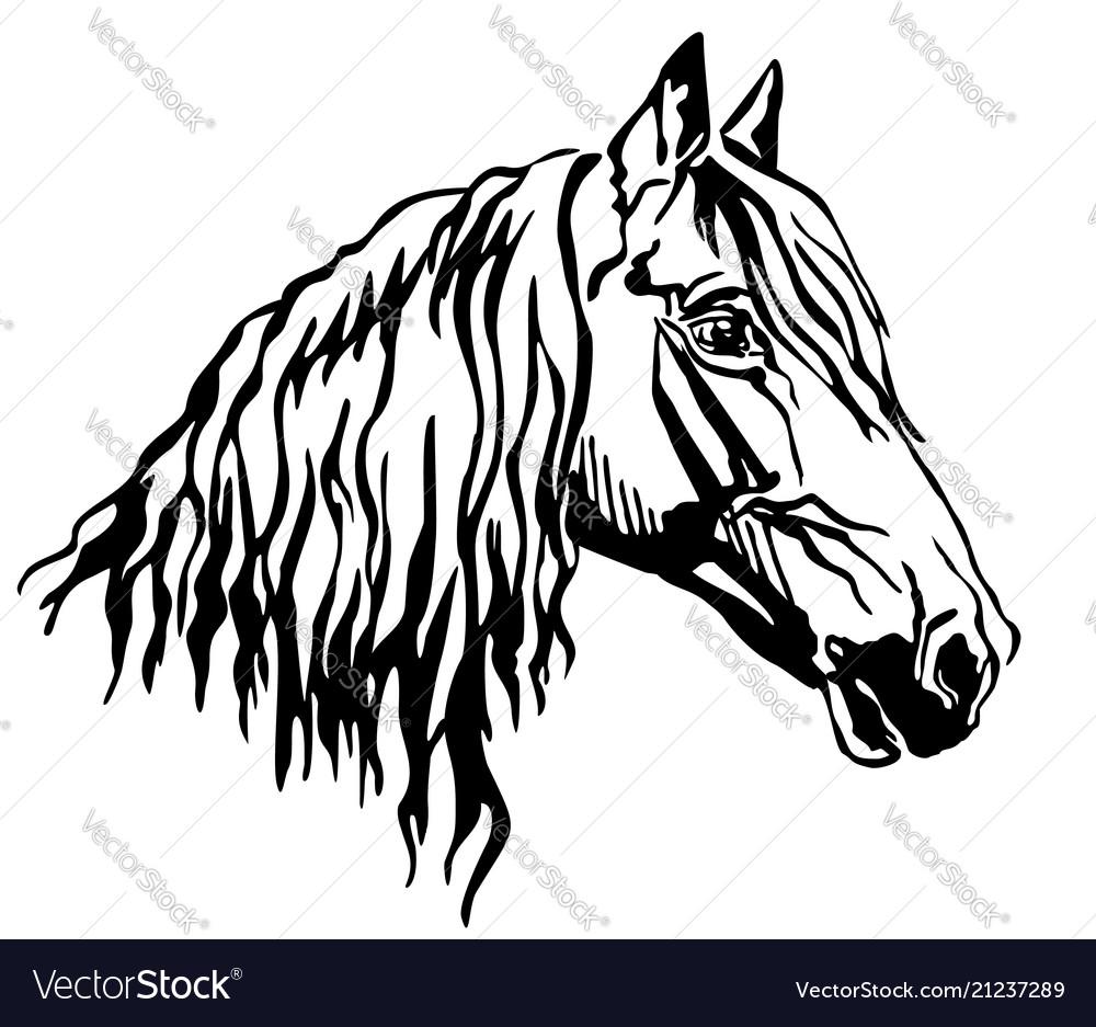 Decorative portrait of orlov trotter horse