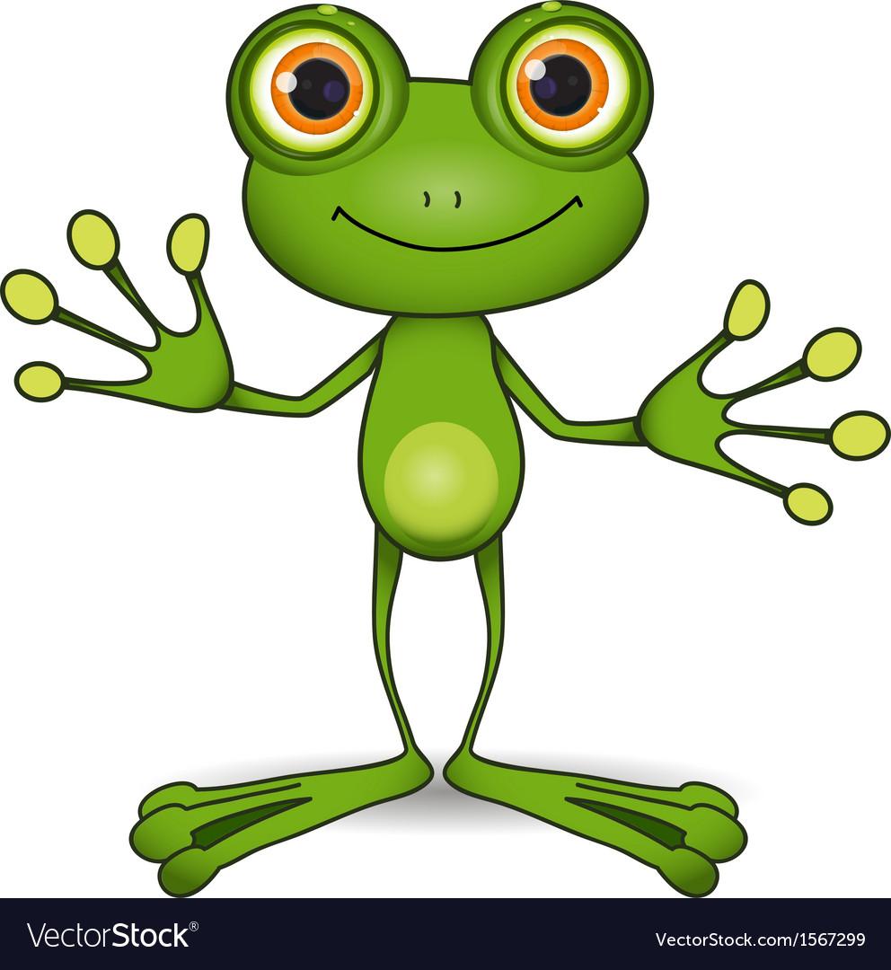 Cute frog vector image