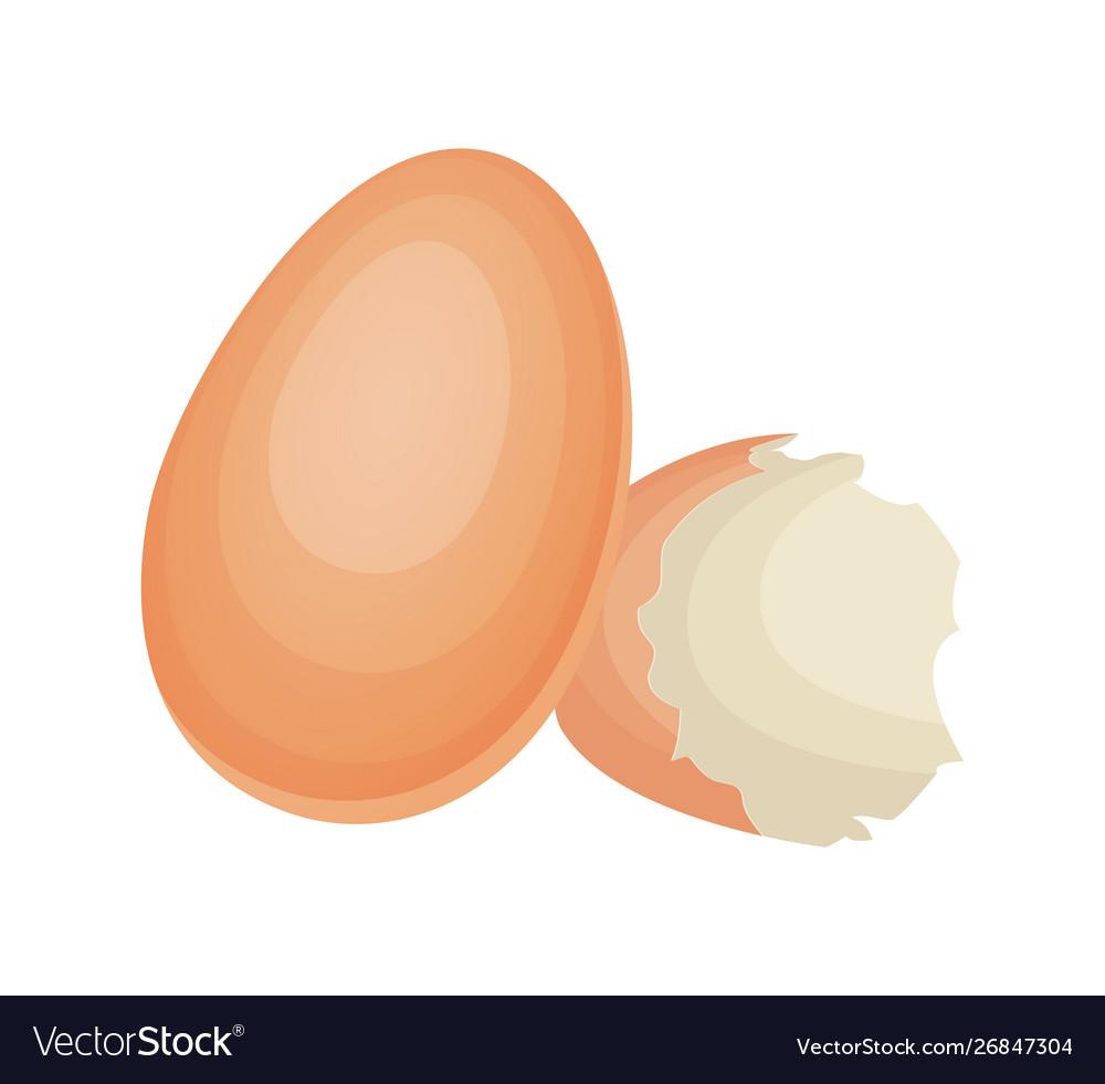 Broken Egg Shell On Isolated White Background