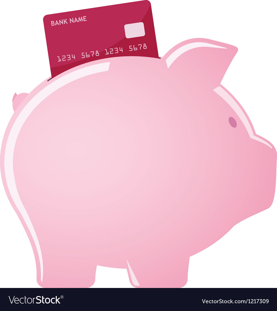 Piggy bank accepting credit cards vector image