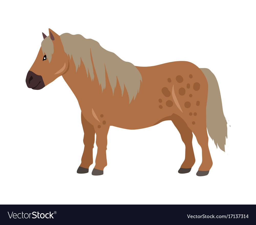 Red pony in flat design vector image