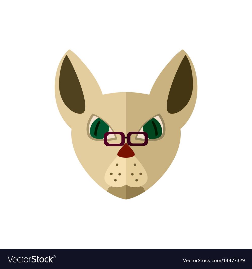 Siamese cat head with glasses icon vector image