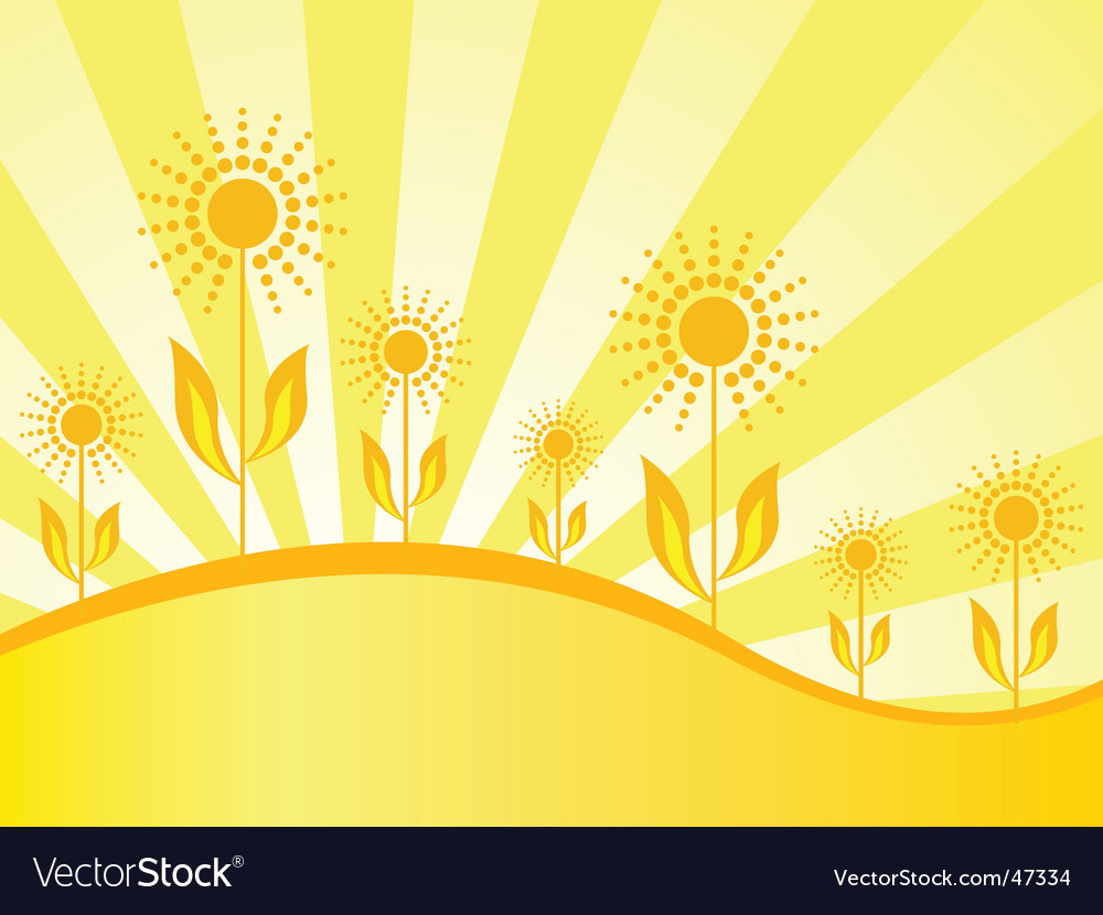 Spring wallpaper with sunflowers