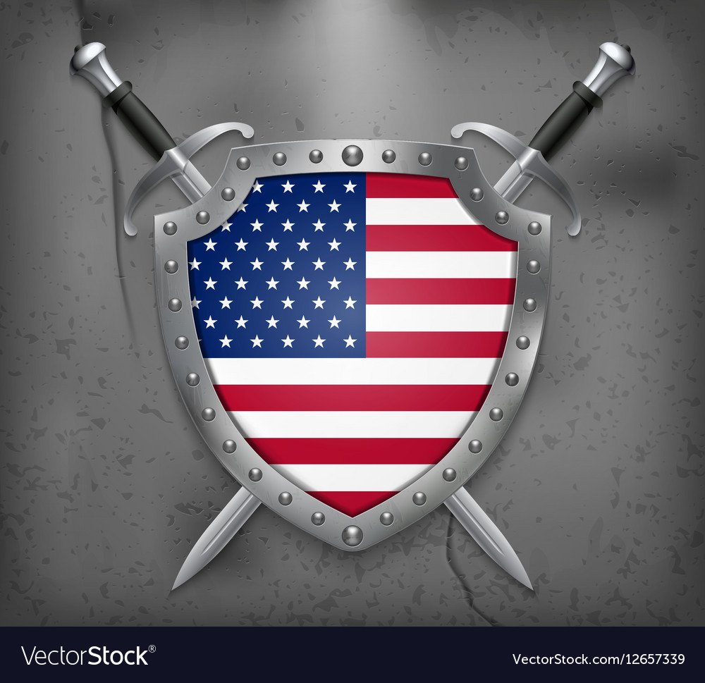 Flag of United States of America American Flag vector image