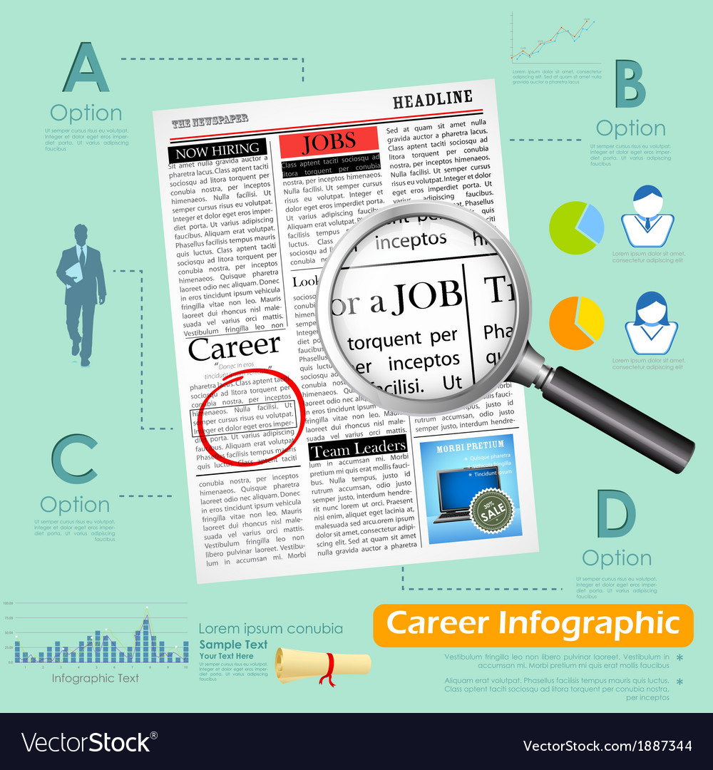 Career Infographics vector image